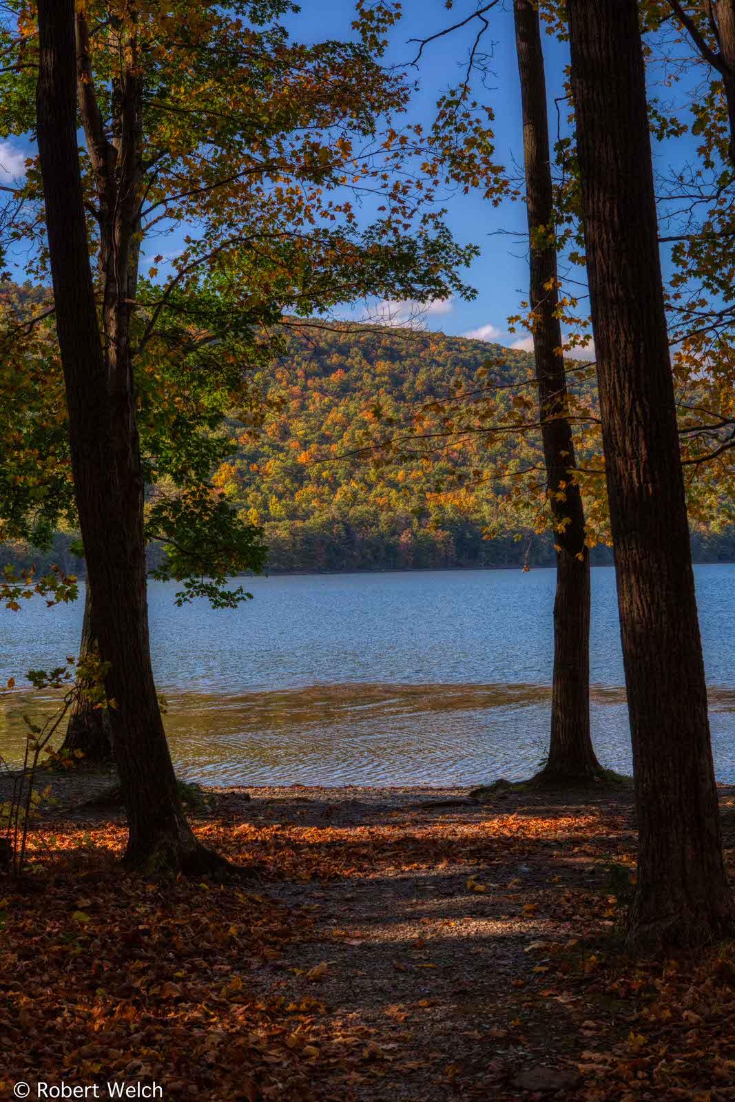 Land Robert Welch Photo